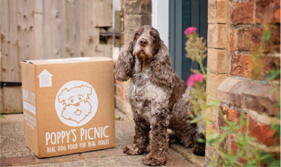 Poppy's Picnic Real Dog Food for Real Dogs